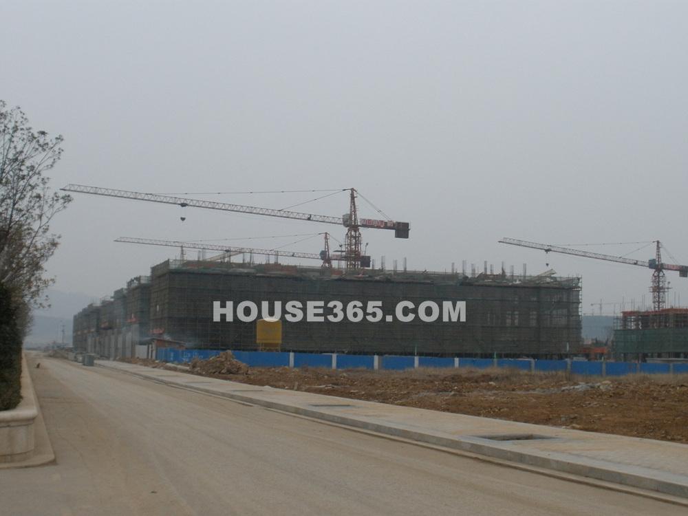 部分楼栋已盖到3、4层(1.10)