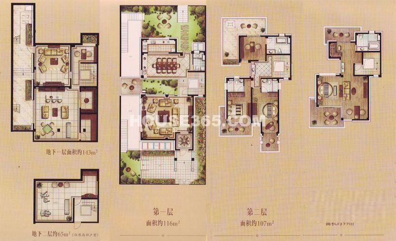 TOP未来联排别墅D户型4室2厅5卫1厨 325.00㎡