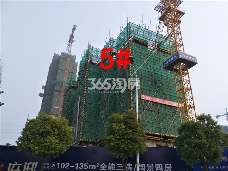 珍宝岛熙悦府在建5#楼实景图(11.29)