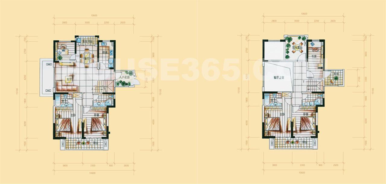 25号楼D'户型228平方米