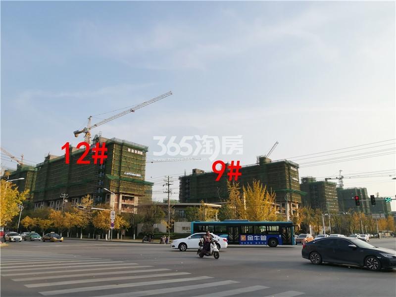 美的雍翠园在建12、9#楼实景图(11.26)