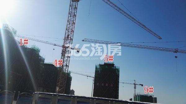 中海熙岸华府1、4、5#楼洋房及高层9#楼实景(1.15)
