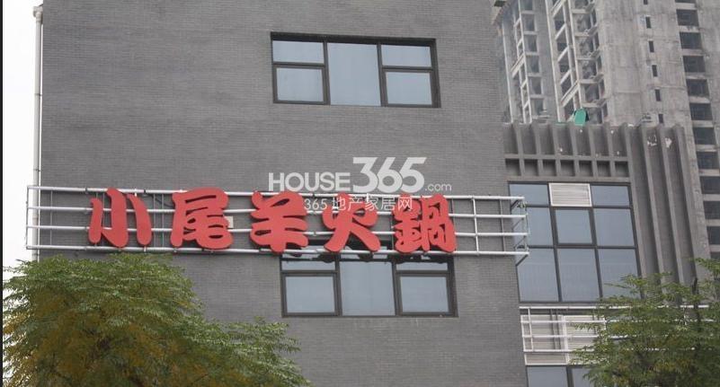 荣华北经城周边小尾羊火锅(拍摄于2013.03.28)