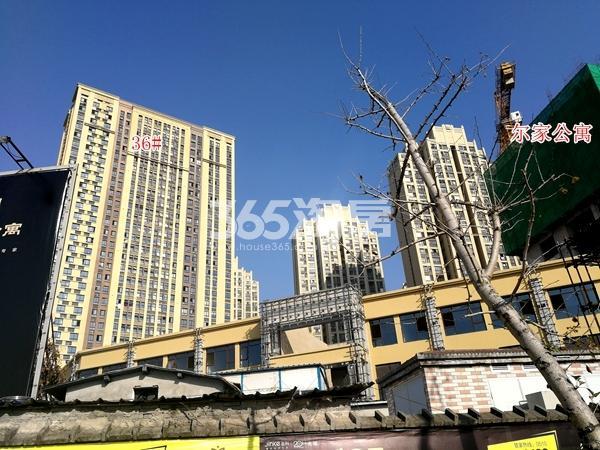 金科米兰尔家公寓及36#楼实景(2017.12)