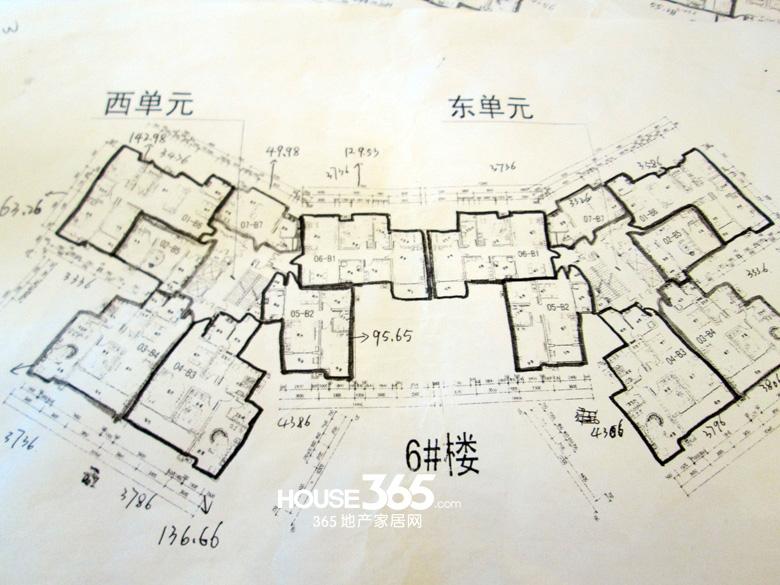 腾业国王镇6#楼楼层图
