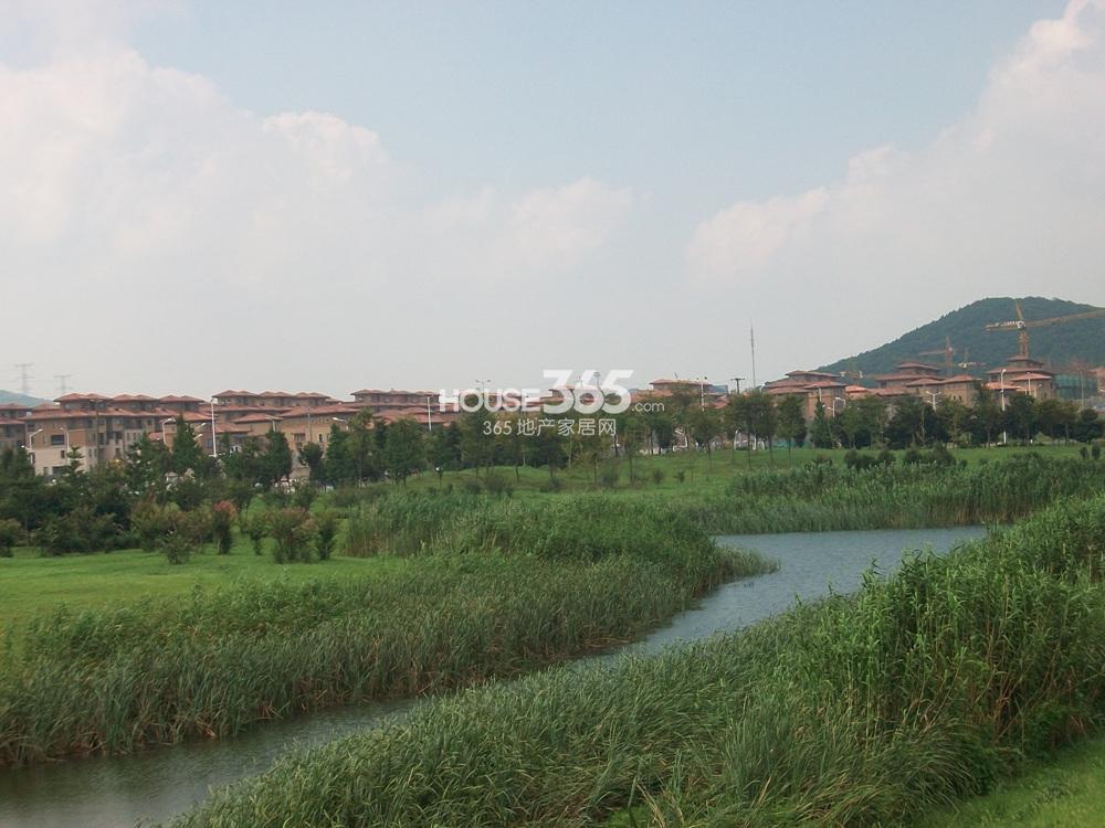 高科荣境东面仙林湖公园实景图(8.21)