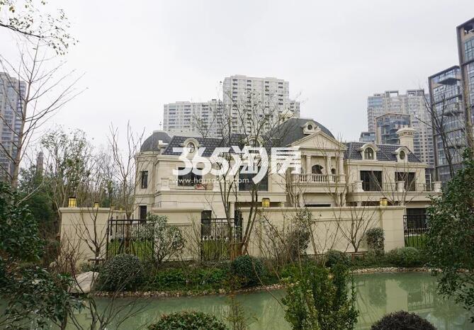 绿地西水东中央生活区别墅实景图(2017.2 摄)