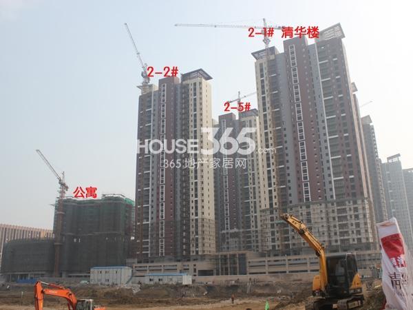 玉塘路侧望向星河国际国3号工程实景图(2013.11.9)