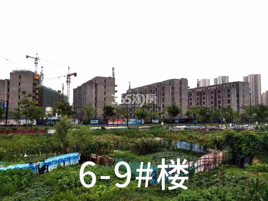 绿都云和湖6-9号楼施工进程(2019.8)