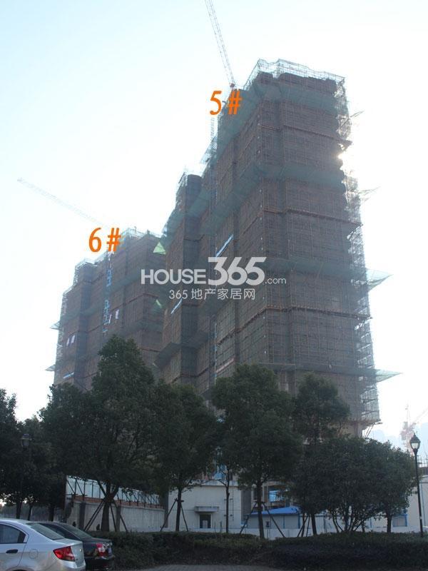 世茂香槟湖5、6#楼工程实景图(2014.1.23)