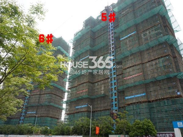 世茂香槟湖5、6#楼工程实景图(2014.4.23)