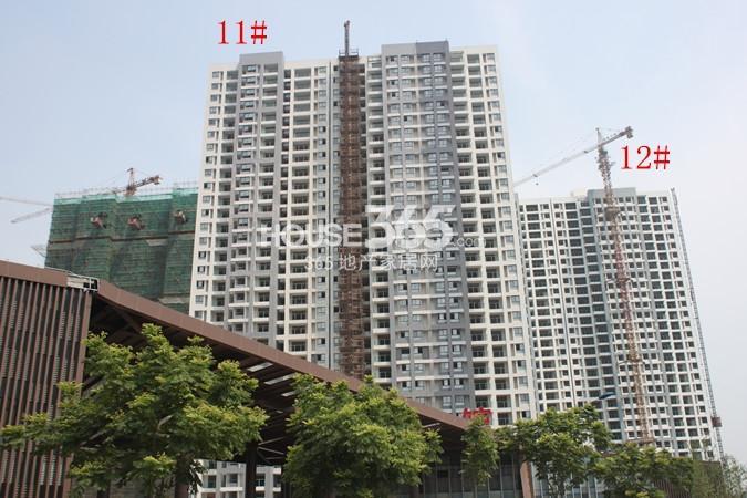 绿洲白马公馆11#、12#工地进度实景图(2014.6)