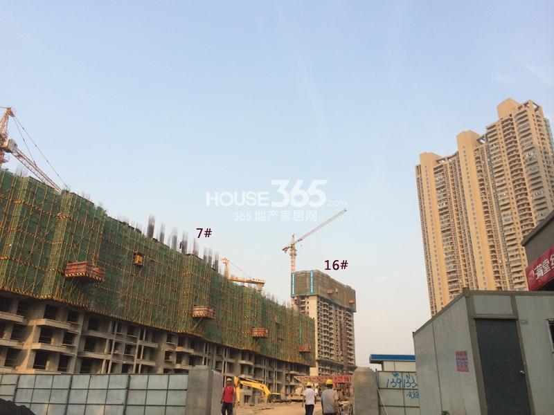 世茂外滩新城在售楼栋最新进展(7.4)