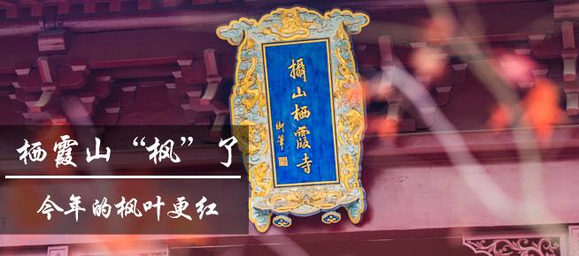 """光影石城325:栖霞山,""""枫""""了!今年枫叶更红"""