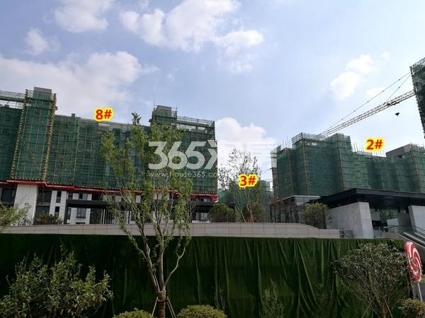 绿地天空树2#、3#、8#楼洋房工程实景(2018.4摄)