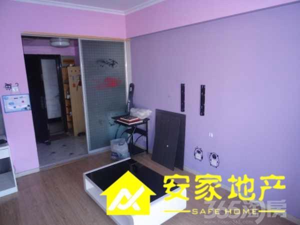 紫色的40平米单身公寓欧式风格装修图片