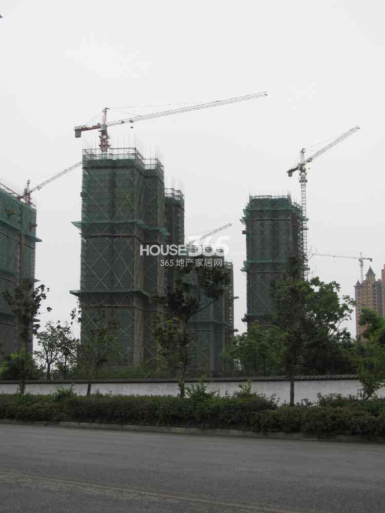 雅居乐滨江国际在建楼栋实景图(8.26)
