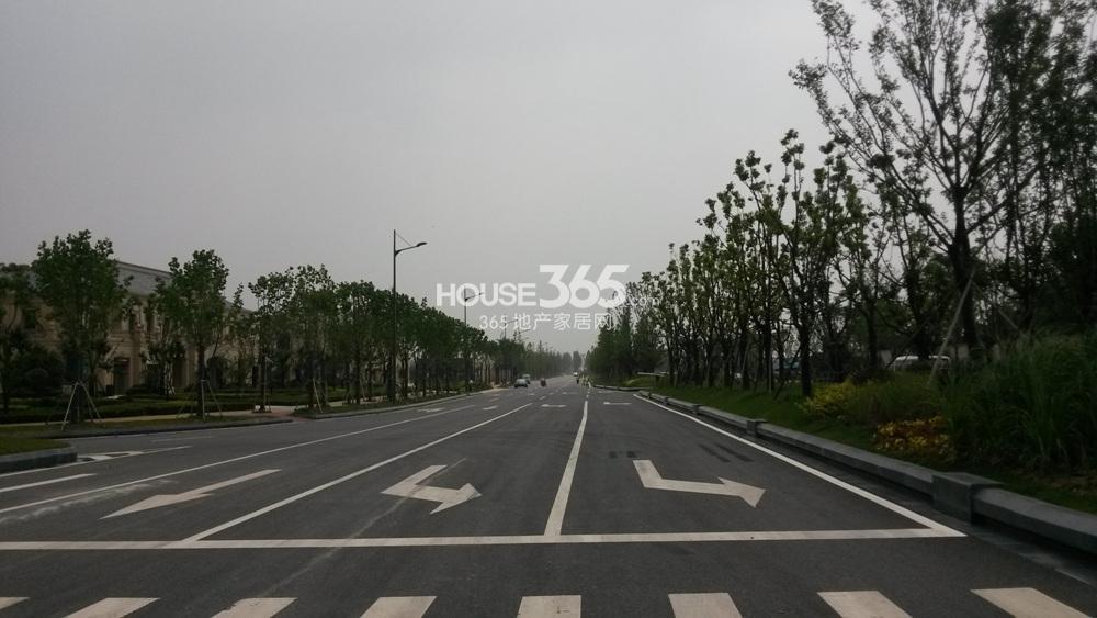翠屏诚园周边道路通畅(8.20)