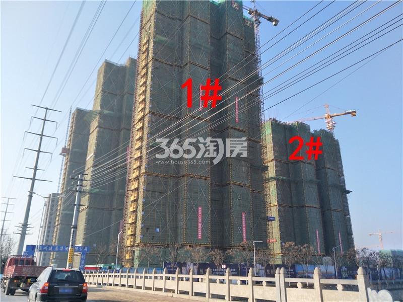 珍宝岛熙悦府1、2#楼工地实景图(1.24)