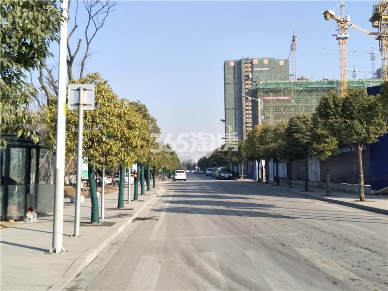 珍宝岛熙悦府项目周边环境实景图(1.24)