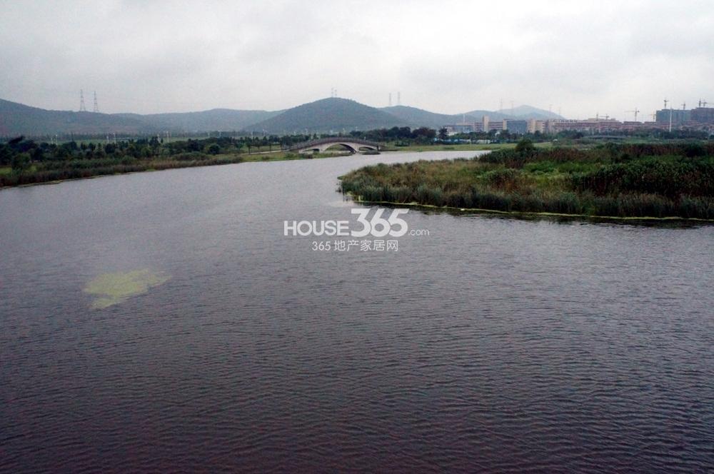 高科荣境东面仙林湖实景图(9.14)