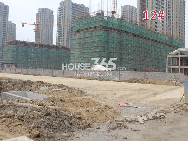 绿城玉兰广场工程进度实景图(2014.9.16)