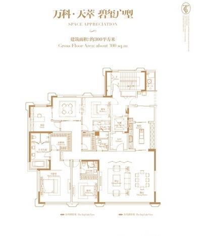 万科玲珑湾天萃碧玺户型四室三厅四卫一厨300平米
