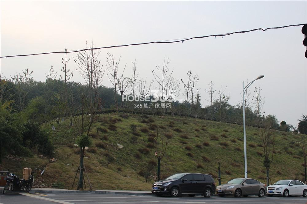 中电颐和府邸毗邻石景山(11.13)