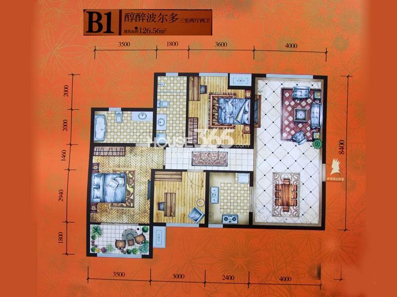 腾业国王镇B1户型3室2厅2卫1厨126㎡
