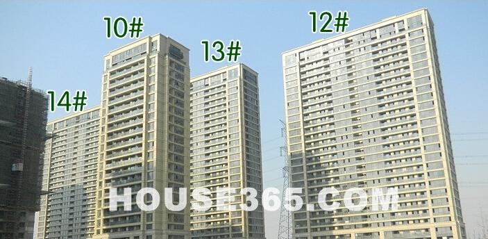 翠屏诚园楼栋最新进展(1.30)