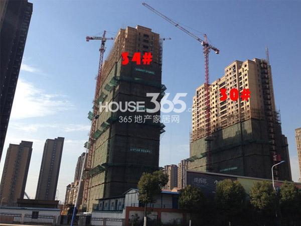 九洲花园缇香郡30、34#工程进度(2015.1)