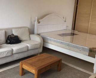 世纪晶钻1室1厅1卫50平米整租精装