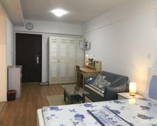 金大地时代天街1室1厅1卫47平米整租精装