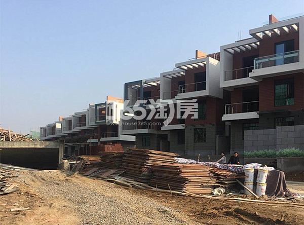 枫林学府已建成的别墅实景图(3.20)