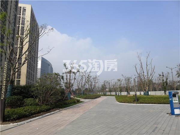 东方万汇城周边景观实景图(11.23)