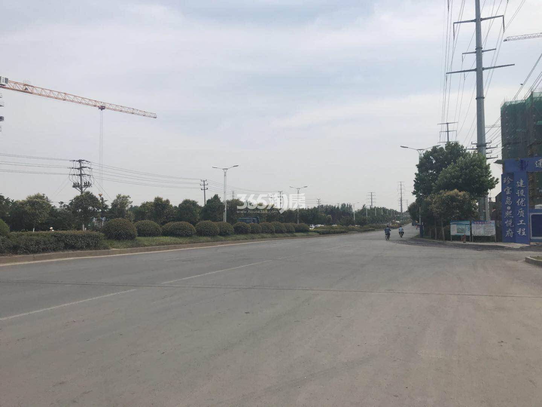 珍宝岛熙悦府周边道路实景图(6.16)