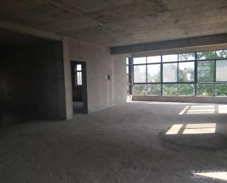 八卦洲三层自建房500平,院子400平