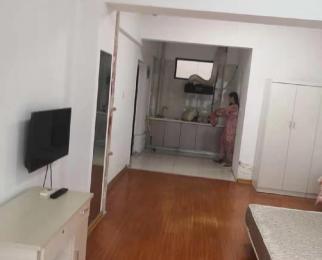 星展大厦1室0厅1卫60平米整租精装