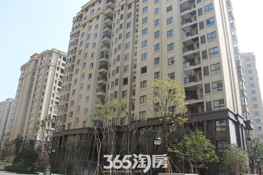 东方蓝海楼栋图(2018.3摄)