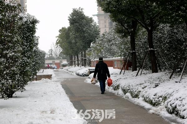 万科海上传奇初雪清扫活动-走道(2018.1摄)