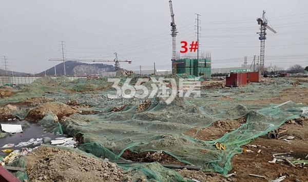 珍宝岛熙悦府3#楼在建实景图(1.26)
