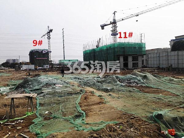 珍宝岛熙悦府9、11#楼在建实景图(1.26)