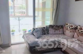 紫枫雅苑1室1厅1卫60平米整租简装