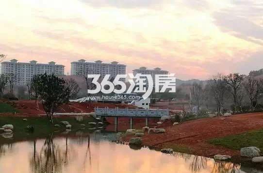 碧桂园城市花园实景图(2.23)