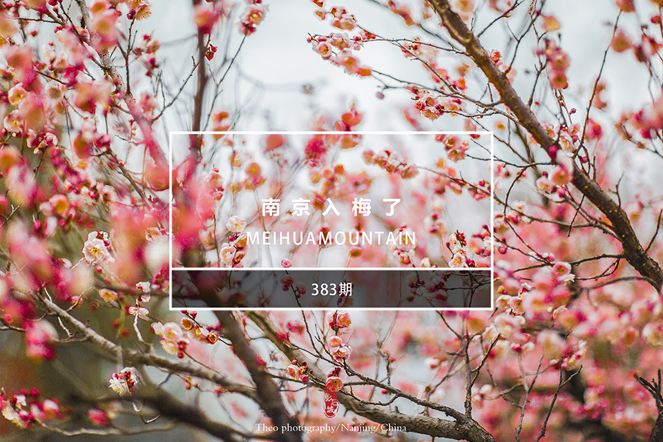 光影石城383:南京入梅了