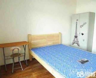 (个人)泰伯二区,精装小单间,地板房出租!