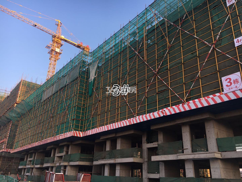 江山薈3号楼实景图(12.18)