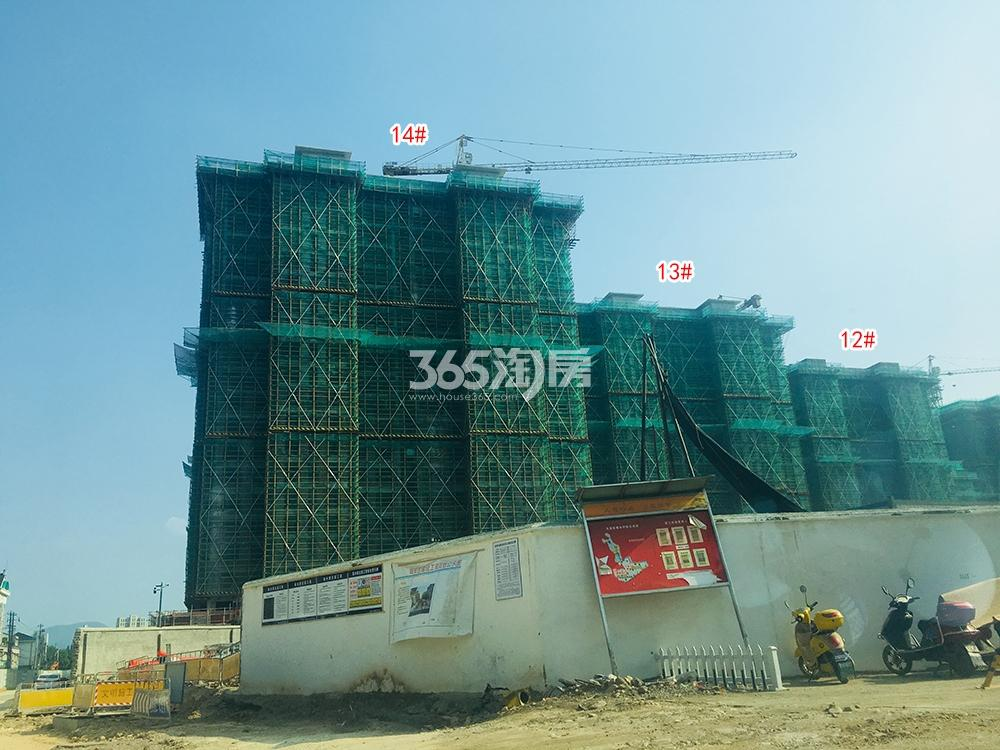 苕溪壹号12-14#工程进展(2018.6)