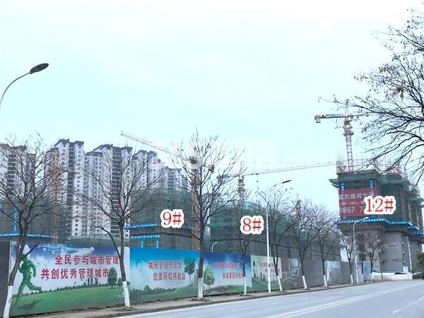 富力运河十号小高层8#、9#楼,高层12#楼实景图(2018.2 摄)