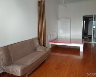 京商商贸城1室1厅1卫60平米精装整租